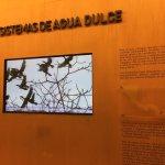 Museo del Caribe Foto