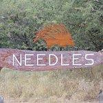 Photo of Needles Lodge