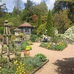 At the arboretum/walled garden.