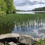 Lakeside view.