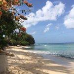 Paynes Bay