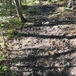 The trail is very muddy through twelve ravines