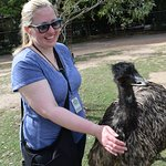 Meeting an emu