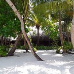 Photo of Kuramathi Island Resort