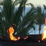 Marquis Los Cabos All-Inclusive Resort & Spa Photo