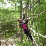 In the trees at Go Ape!