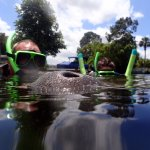 Photo of Manatee Fun Tours