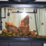 AMERICAN ELITE INN MOTEL HAZARD KY LOBBY FISH TANK