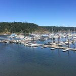A view of Friday Harbor where we had a 2 hour lunch break or walk about.