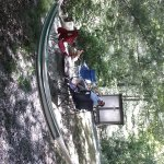 Ash Grove Mountain Cabins & Camping Foto