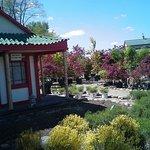 Linton's Enchanted Gardens