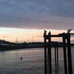 Фотография The Pier Bistro