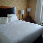 Foto de Fairfield Inn & Suites Tampa Fairgrounds/Casino