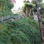 The hike to/from Coit tower....We went down.