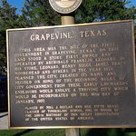 Information about Grapevine