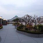 頂樓的小庭園,可以看到台南市政府