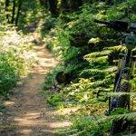 I Sentieri delle Volpi d'Invo - MTB Trails