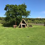 Safari tents, sea views, shower rooms, pizza oven, tree swing