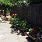 Photo of il giardino