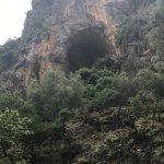 Photo of Safari Adventures