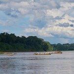 Foto de Refugio Amazonas