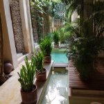 Photo of Hotel Casa Lola