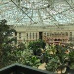 Atrium room view