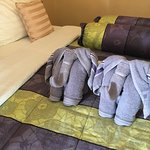 elephant towels
