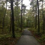 Photo de Nickerson State Park