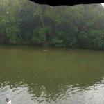 ภาพถ่ายของ The County Line on the Lake
