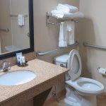 Wheelchair accessible lavatory