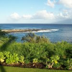 View near Kapalua Beach