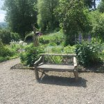The garden at Town End