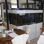 Breakfast room (huge tropical fish tank)