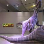 dinosaur replica inside museum