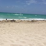 Foto de Deauville Beach Resort