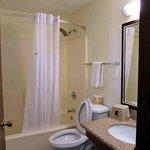 Room 108 bathroom, small counter, nice shower head