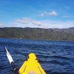 Breathtaking Queen Charlotte Sound