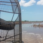 Photo of Capt Mitch's - Everglades Private Airboat Tours