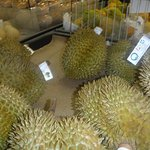 Durian for sale at the Asian supermarket.