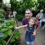 "Visitors enjoy the Florida Museum ""Butterfly Rainforest"" exhibit. Photo by Eric Zamora"