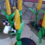 Nebraska Corn Stalks!! Love em!