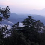 Foto di Kasaar Jungle Resort