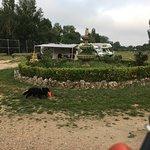 Foto de Camping Don Quijote