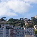 View from the room - Panorama de la chambre