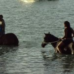 Photo of Being with Horses