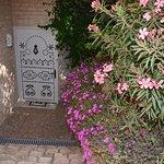 Un accueil fleuri à Dar Diamar