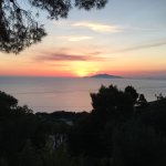 Photo of Alle Ginestre Capri Bed & Breakfast