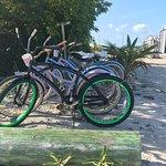 rent the bikes