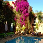 A very relaxing sunset by the pool and next to the extraordinary flowering bougainvillea!